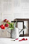 Red tulips in watering can in front of picture frames and wall papered with book pages