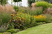 Sommerlicher Garten mit gelbem Sonnenhut und Ziergräser neben Rasenfläche