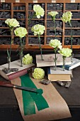 Green carnations in test tubes stuck in old books