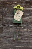 Book, antique bookplate and green carnations tied together with bicoloured string