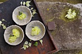 Green carnations in bowls made from pages of old books