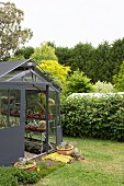 Anthracite greenhouse for succulents with a sliding door next to a green hedge