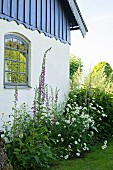 Summer flowerbed outside country house with blue clapboard upper storey