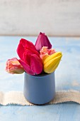 Tulips of various colours in ceramic pots