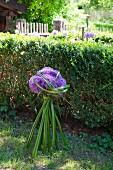 Gesteck aus Zierlauch und Binsengras vor Buchshecke im Garten