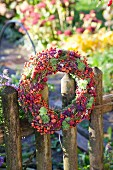 Autumnal wreath of rose hips, blackberries, heather and houseleeks on wooden fence