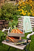 Tea towel embroidered with carrot motif next to wooden crate of freshly picked carrots on garden chair
