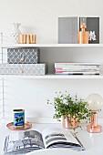 String-Regal über Schreibtisch mit Zimmerpflanze und Tischlampe in Home Office