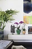Orchideen auf weißem Lowboard neben Zimmerpalme
