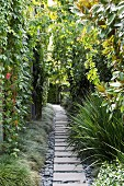 Garden path with stone slabs between the green garden wall and green plants