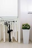 Weißer Raum mit Kleiderstange und hohem Blumentopf Pflanze