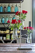 Red roses in laboratory flasks in metal lab stand on rustic table