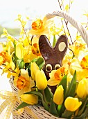 Yellow tulips, narcissus and chocolate Easter bunny in basket