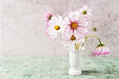 Edible cosmos flowers in vase