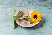 Edible sunflower on plate