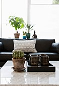 Cactus on white marble table top in front of black leather couch