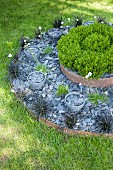 Modern round flowerbed on two levels mulched with slate chippings