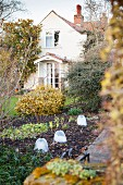 Small cloches in wintry garden with house in background