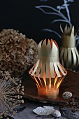 Small paper lanterns on piece of bark in front of dried flowerheads