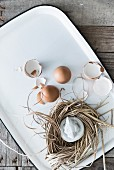 Egg shells and raffia nest on white tray