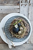 Black eggs and quail eggs in nest on plate