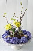 Easter arrangement of hyacinths, primulas and twigs on cake stand