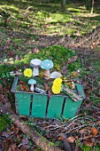Wooden toadstools, slice of tree trunk and moss in metal basket in woods