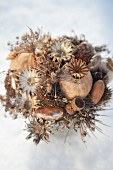 Arrangement of dried flowers, poppy seed heads and acorns