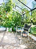 Garden chair on brick floor amongst various vegetable plants in greenhouse