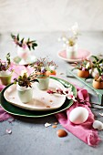 Posies arranged in empty egg shells on table