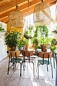 Flowering potted plants and retro chairs in summer house with open sides and closed side