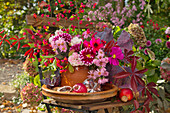 Autumn bouquet of cabbage leaves, dahlias, apples, walnuts and glass prisms on garden chair in garden