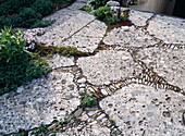 Paving, natural stone, conglomerate, joints with pebbles