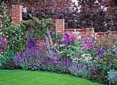 Blue garden, larkspur, ornamental onion, digitalis, ornamental sage