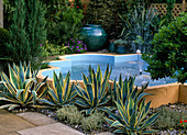 Architectural pond with fountain, agave, thyme
