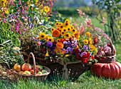Basket with cut flowers, Rudbeckia, Centaurea, Antirrhinum