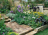 Bed of iris, achillea, geranium