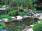 Pond with pebbles, books and gravel