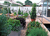 Modern vegetable garden with raised beds made of stainless steel, gravel path