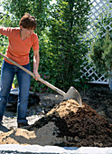 Planting a heather bed, bed preparation