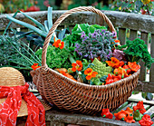 Basket with various vegetables
