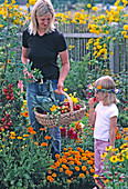 Mother and daughter harvesting vegetables in the cottage garden
