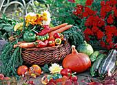 Cucurbita (pumpkin) and zucchini, capsicum (paprika)