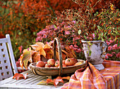 Autumn still-life with malus in the basket, wild wine leaves