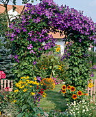 Garden entrance with clematis at the bow