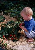 Child in strawberry pockets