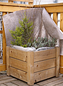 Bale protection for the winter (woody plants)