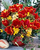 Tulipa 'Abra', Hyacinthus 'Gipsy Princess'
