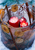 Ice lantern with frozen apple slices, rosehips and cinnamon sticks