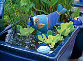 Fish as a water feature